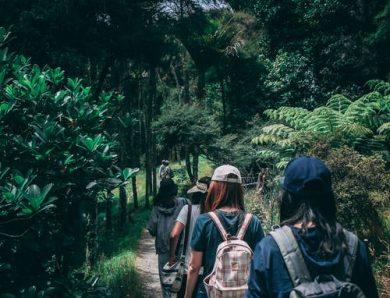 Partir en randonnée : et si on parlait des règles de sécurité ?